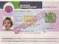 Xin giấy chứng nhận đang sinh sống ở Anh đối với công dân Châu Âu